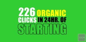 How I Get 226 Organic Click In Just 24hr Old Blog! Totally New Domain!