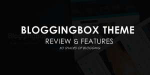 25+ Special Features of BloggingBox Theme You Should Know Before Buying!